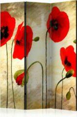 Rode Kamerscherm - Scheidingswand - Vouwscherm - Golden Field of Poppies [Room Dividers] 135x172 - Artgeist Vouwscherm