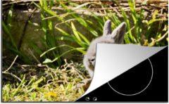 KitchenYeah Luxe inductie beschermer Baby konijnen - 78x52 cm - Grijs baby konijn - afdekplaat voor kookplaat - 3mm dik inductie bescherming - inductiebeschermer