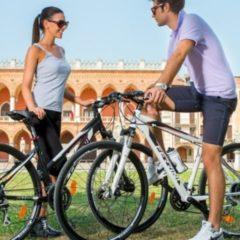 28 Zoll Damen Trekking Fahrrad 24 Gang Ferrini... 52cm