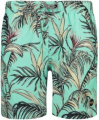Blauwe Shiwi Men Swim Short Tropics Bahamas Blue XL