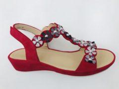 ARA 12-28009-06 Sandaal rood maat 40