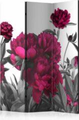 Roze Kamerscherm - Scheidingswand - Vouwscherm - Lush meadow [Room Dividers] 135x172 - Artgeist Vouwscherm
