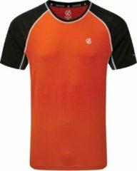 Rode Dare 2b Dare2B Conflux Wool t-shirt voor heren comfortabele sporttop van stretchmateriaal, trekking feloranje zwart
