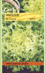 Groene Oranjeband Zaden Oranjeband - Andijvie St. Laurent