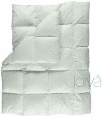 Witte Loiva Premium - Ganzendons Winterdekbed 260 x 220 cm - Lits-jumeaux XL