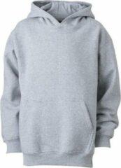 James & Nicholson James and Nicholson Kinderen/Kinderkapjes Sweatshirt (Grijze Heide)