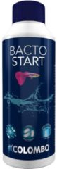 Colombo Bacto Start - Aquariumbenodigdheden - 250 ml