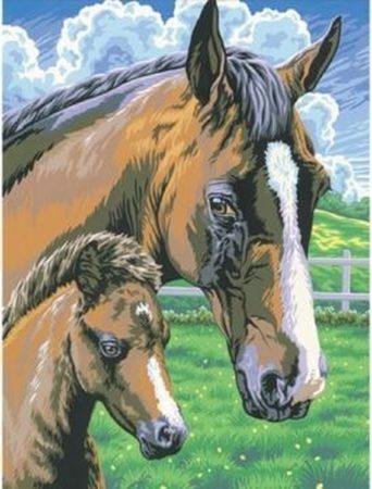 Afbeelding van Basic Schilderen Op Nummer Paard met Veulen