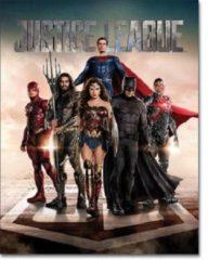 Desperate Enterprises Justice League Movie Metalen wandbord 31,5 x 40,5 cm.