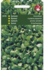 Buzzy Seeds Hortitops Zaden - Spinazie Breedblad Scherpzaad,Zomer 50Gr