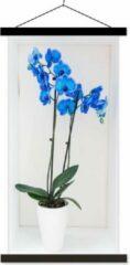 TextilePosters De felblauwe orchideeën in een bloempot schoolplaat platte latten zwart 60x120 cm - Foto print op textielposter (wanddecoratie woonkamer/slaapkamer)