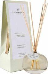 Plantes & Parfums Provence Plantes & Parfums Natuurlijke Garden of Eden Geurstokjes I Interieurparfum I Frisse Geur I 100ml