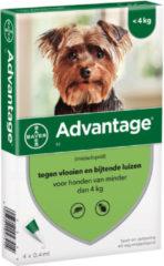 Advantage Hond 4 pip - Anti vlooien en luizenmiddel - 0.4 ml 1.5-4 Kg