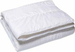 Witte Queens Dekbed Satijnstreep - Enkel - 100% Isocraft Polyestervezel - 240x200 cm