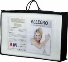 Witte AM Products AM Product - Talalay Allego - Hoofdkussen - Latex - Soft - 9/11cm