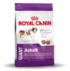 Royal Canin Shn Giant Adult - Hondenvoer - 15 kg - Hondenvoer