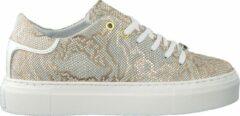 Notre-V Dames Lage sneakers J4850e - Goud - Maat 39