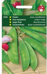 Rode Hortitops Zaden - Peulen Grijze Roodbloeiers