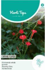 Hortitops Zaden - Kardinaalswinde Rood (Ipomoea quamoclit)