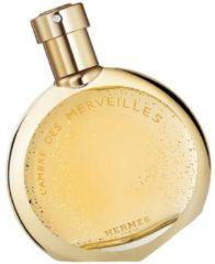 Hermes Terre L'Ambre Des Merveilles Eau de Parfum Spray 50 ml