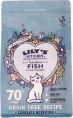 Lily's kitchen cat fisherman's feast fish kattenvoer 2 kg