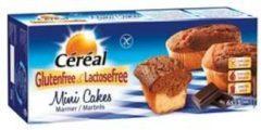 Cereal Glutenvrij En Lactosevrij Cake Mini Marbres