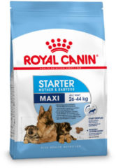 Royal Canin Maxi Starter Mother & Babydog - Hondenvoer - 4 kg