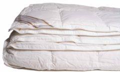 Witte Cley 100% dons 4-seizoenen dekbed 140x220 cm