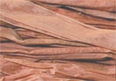 Raffia Folia bundel 50 gram reebruin