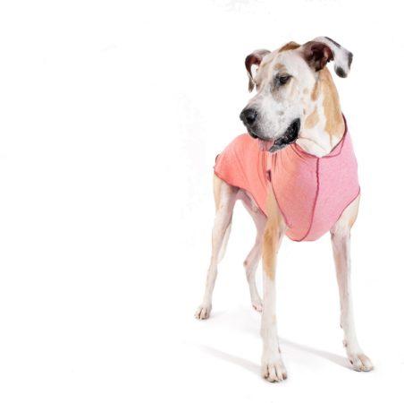 Afbeelding van GoldPaw Series GoldPaw - Sunshield Tee Pullover hondenjas - Roze - maat 24 - grote maten