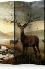 Grijze Kamerscherm - Scheidingswand - Vouwscherm - Deers by mountain stream [Room Dividers] 135x172 - Artgeist Vouwscherm