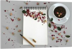 Rode KuijsFotoprint Plexiglas - Koffiebonen met Kruiden - 120x80cm Foto op Plexiglas (Met Ophangsysteem)