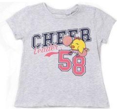 Grijze T-shirt Korte Mouw Chicco 09006955000000