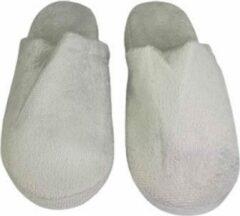 Licht-grijze Merkloos / Sans marque Model laag pantoffels velvet look - Lichtgrijs - Maat 40 / 41