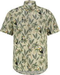 Purewhite Regular fit bruin shirts lente/zomer 2020 Heren Overhemd Maat L