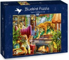 Bluebird puzzel Tijgers komen tot leven (1000)