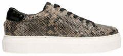 Maruti Ted Sneakers Snake Dames Sneakers - Taupe - maat 40