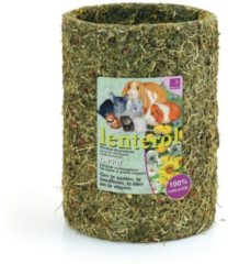 Groene ESVE snacks Lenterol Groot 30 cm.
