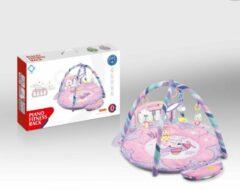 FDBW Interactief Speelkleed – Kitten | Speelkleed Met Boog | Baby Speelmat Gym – 65 x 45 x 10 cm | Baby Speelkleed – Roze