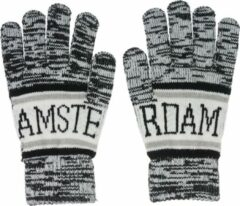 Robin Ruth Handschoenen Uniseks Amsterdam grijs