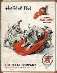 Desperate Texaco - Hatful of Pep. Metalen wandbord 31,5 x 40,5 cm.