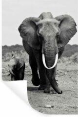 StickerSnake Muursticker Baby Dieren - Olifanten moeder en kind in zwart-wit - 60x90 cm - zelfklevend plakfolie - herpositioneerbare muur sticker