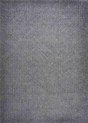 Disena Grijs vloerkleed - 160x230 cm - Effen - Industrieel