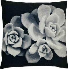 Decolenti   Echeveria Plant Sierkussenhoes   Zwart   Wit   Grijs   Wasbaar   Decoratie   45cm x 45cm