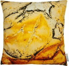 Swan Spring Raw Earth Yellow Rust | Kussen | Geel | Oranje | Zwart | 45 x 45cm