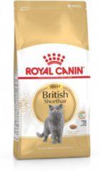 Kattenvoer Droogvoer kat british shorthaar adult 2 kg Royal Canin