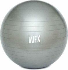 #DoYourFitness - Gymnastiek Bal - »Orion« - zitbal en fitness bal ter ondersteuning van lichaamshouding, coördinatie en balans - Maat : 75 cm. - zilver