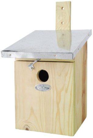 Afbeelding van Grijze Esschert design Best For Birds Koolmees Vogelhuisje - Lichtgroen