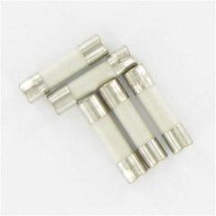 Zilveren Kopp as zekeringen 2 A glas snel 5 x 20 mm - 5 stuks