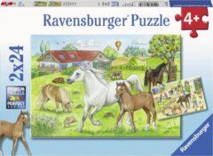 Ravensburger puzzel Op de manege - Twee puzzels - 24 stukjes - kinderpuzzel